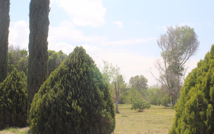 Foto de terreno habitacional en venta en  , y, parras, coahuila de zaragoza, 1775758 No. 11