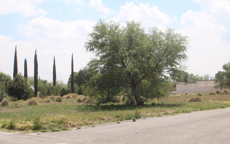 Foto de terreno habitacional en venta en  , y, parras, coahuila de zaragoza, 1776186 No. 07