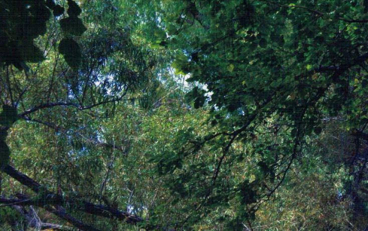 Foto de terreno habitacional en venta en, y, parras, coahuila de zaragoza, 1776186 no 17