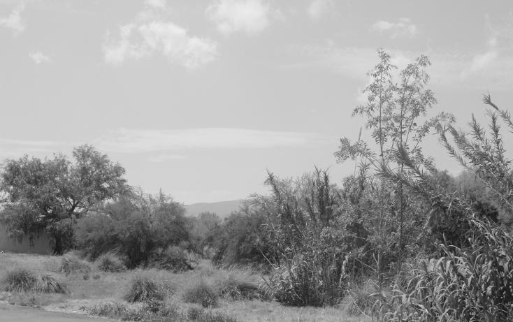 Foto de terreno habitacional en venta en  , y, parras, coahuila de zaragoza, 1778280 No. 08