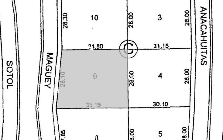 Foto de terreno habitacional en venta en  , y, parras, coahuila de zaragoza, 1779736 No. 03