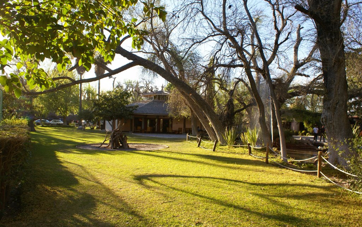 Foto de terreno habitacional en venta en  , y, parras, coahuila de zaragoza, 1779736 No. 22