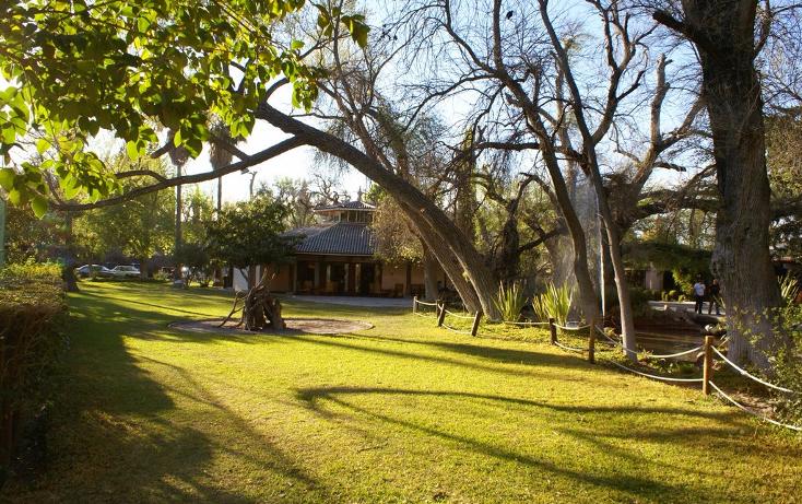 Foto de terreno habitacional en venta en  , y, parras, coahuila de zaragoza, 1857646 No. 23