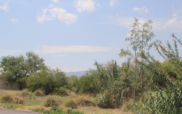 Foto de terreno habitacional en venta en  , y, parras, coahuila de zaragoza, 943379 No. 08