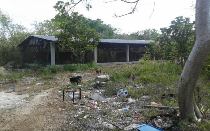 Foto de terreno habitacional en venta en  , yaxche de pe?n, uc?, yucat?n, 1323241 No. 04