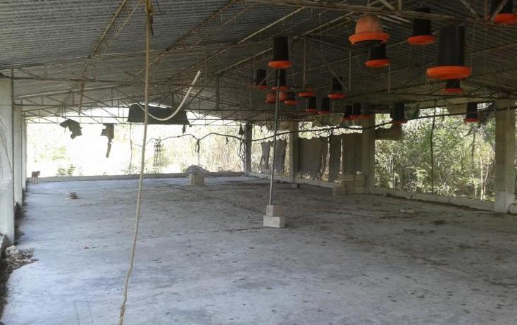 Foto de terreno habitacional en venta en  , yaxche de pe?n, uc?, yucat?n, 1323241 No. 08