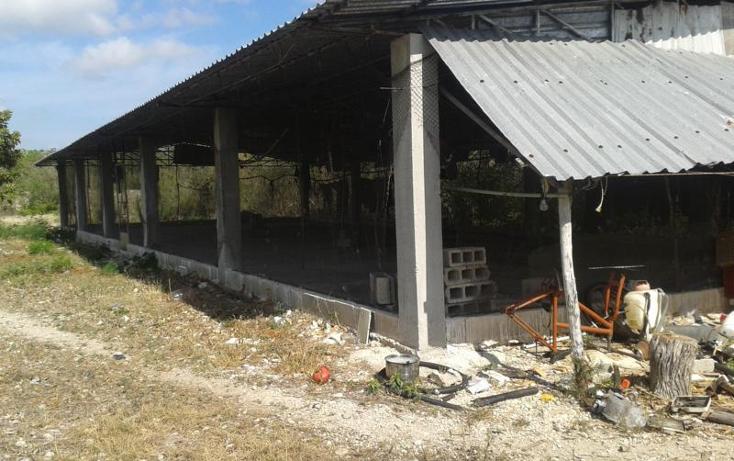 Foto de terreno habitacional en venta en  , yaxche de pe?n, uc?, yucat?n, 1323241 No. 09