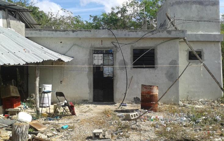 Foto de terreno habitacional en venta en  , yaxche de pe?n, uc?, yucat?n, 1323241 No. 10