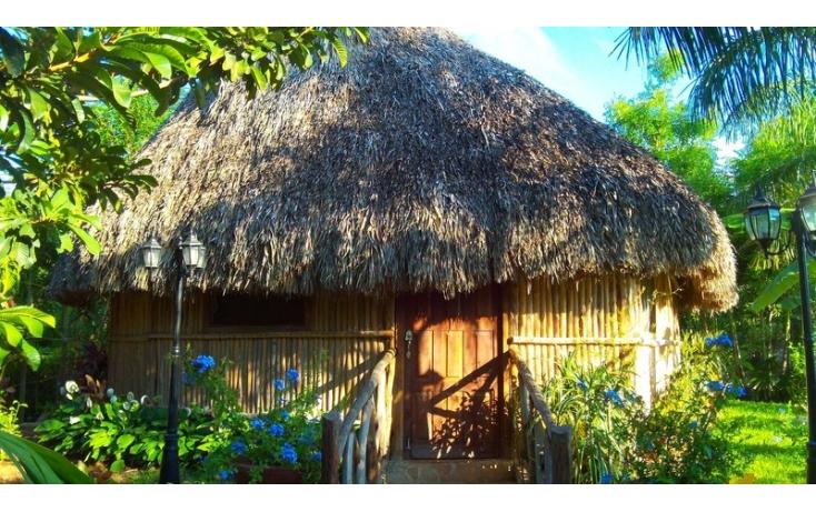 Foto de rancho en venta en, yaxnic maracuya, mérida, yucatán, 448178 no 34