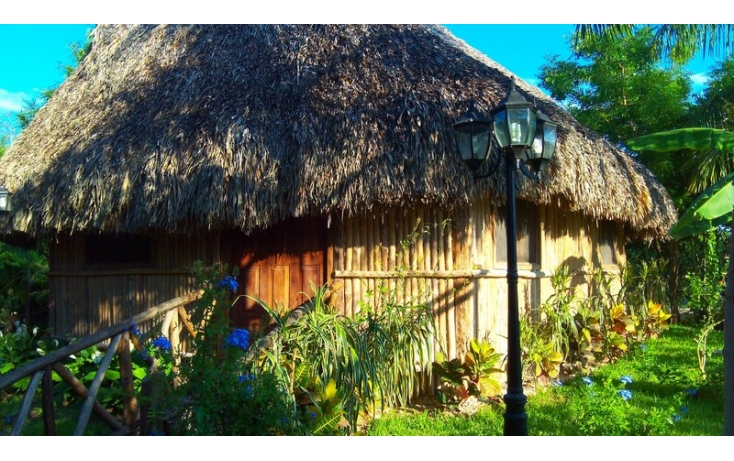 Foto de rancho en venta en, yaxnic maracuya, mérida, yucatán, 448178 no 36