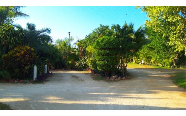 Foto de rancho en venta en, yaxnic maracuya, mérida, yucatán, 448178 no 39