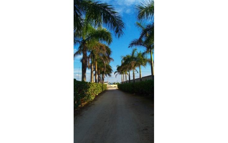 Foto de rancho en venta en, yaxnic maracuya, mérida, yucatán, 448178 no 43