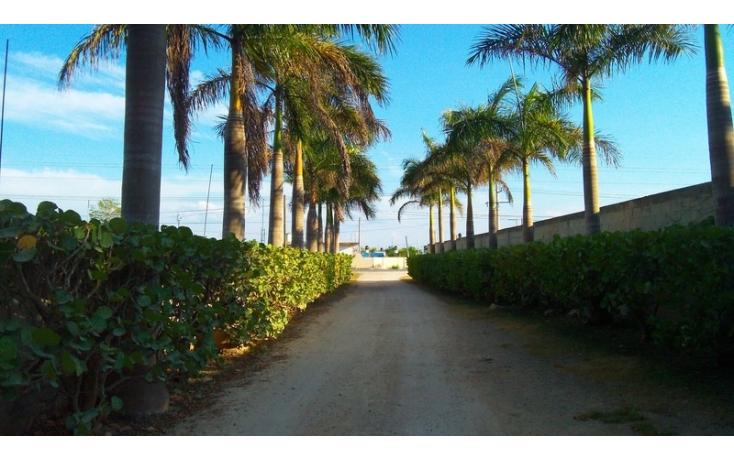 Foto de rancho en venta en, yaxnic maracuya, mérida, yucatán, 448178 no 44