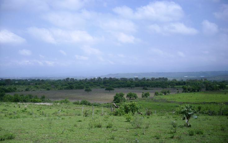 Foto de terreno habitacional en venta en  , yecapixteca, yecapixtla, morelos, 1040077 No. 02