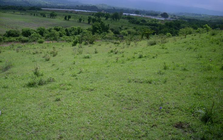 Foto de terreno habitacional en venta en  , yecapixteca, yecapixtla, morelos, 1040077 No. 04