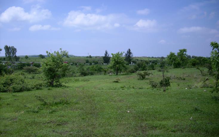 Foto de terreno habitacional en venta en  , yecapixteca, yecapixtla, morelos, 1040077 No. 05