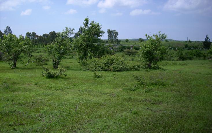 Foto de terreno habitacional en venta en  , yecapixteca, yecapixtla, morelos, 1040077 No. 06