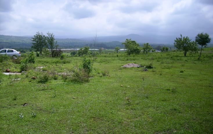 Foto de terreno habitacional en venta en  , yecapixteca, yecapixtla, morelos, 1040077 No. 08