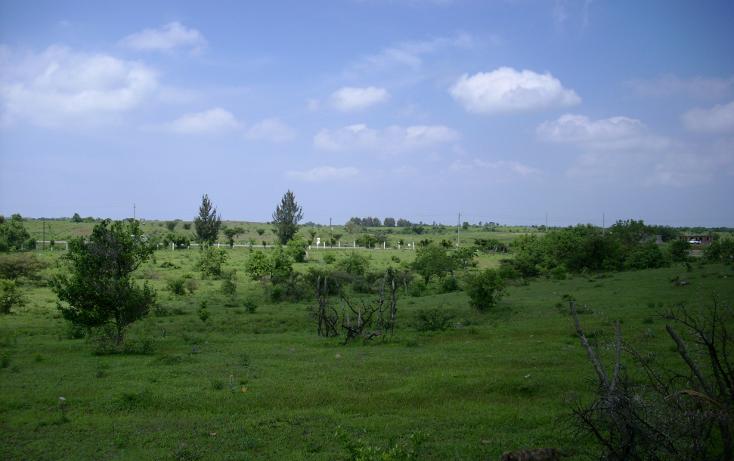 Foto de terreno habitacional en venta en  , yecapixteca, yecapixtla, morelos, 1040077 No. 09