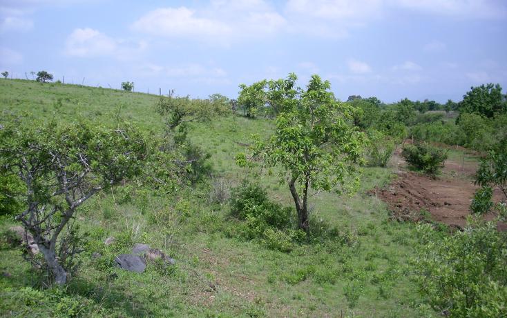Foto de terreno habitacional en venta en  , yecapixteca, yecapixtla, morelos, 1040077 No. 13