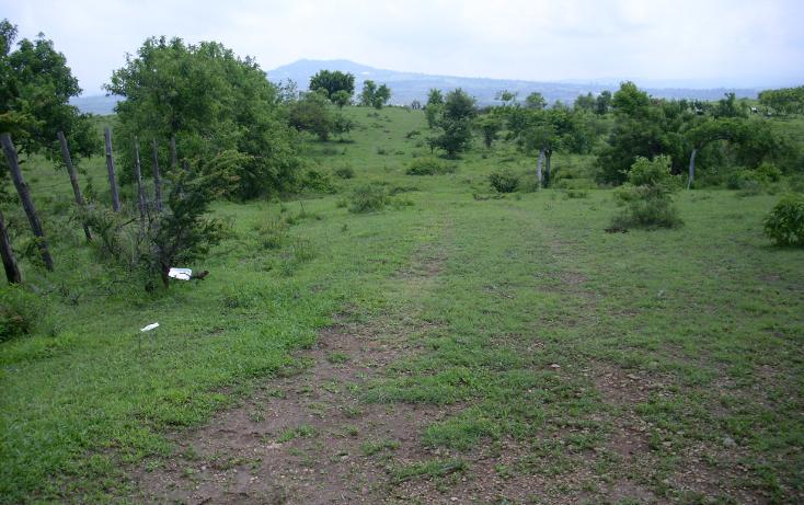 Foto de terreno habitacional en venta en  , yecapixteca, yecapixtla, morelos, 1040077 No. 15