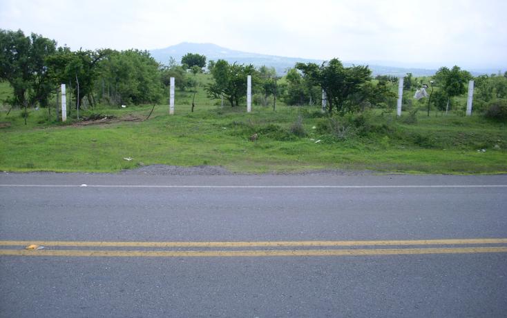 Foto de terreno habitacional en venta en  , yecapixteca, yecapixtla, morelos, 1040077 No. 17