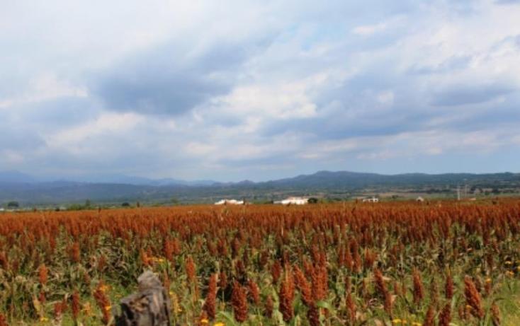 Foto de terreno habitacional en venta en  , yecapixtla, yecapixtla, morelos, 1047711 No. 06