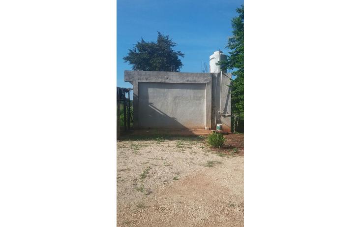 Foto de terreno habitacional en venta en  , yokdzonot, calotmul, yucatán, 1955461 No. 05