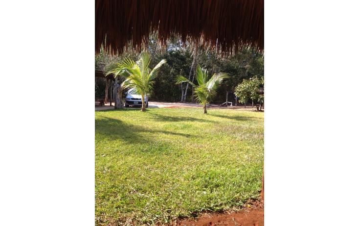 Foto de terreno habitacional en venta en  , yokdzonot, calotmul, yucatán, 1955461 No. 07