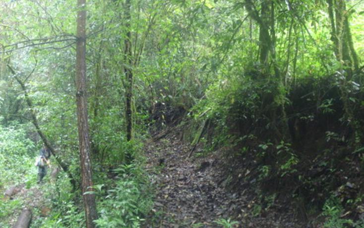 Foto de terreno habitacional en venta en  , yoricostio, tacámbaro, michoacán de ocampo, 1203005 No. 02