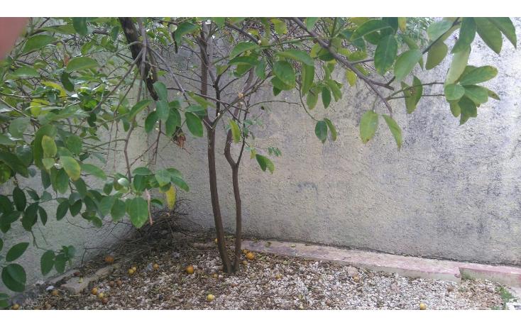 Foto de casa en venta en  , yucalpeten, mérida, yucatán, 1601962 No. 29