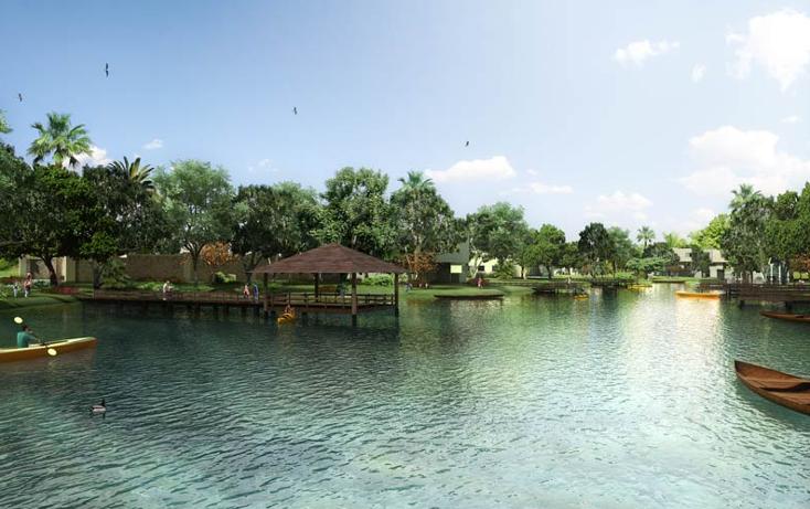 Foto de terreno habitacional en venta en  , yucatan, m?rida, yucat?n, 1062877 No. 12