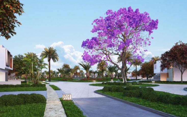 Foto de terreno habitacional en venta en  , yucatan, mérida, yucatán, 1109319 No. 02