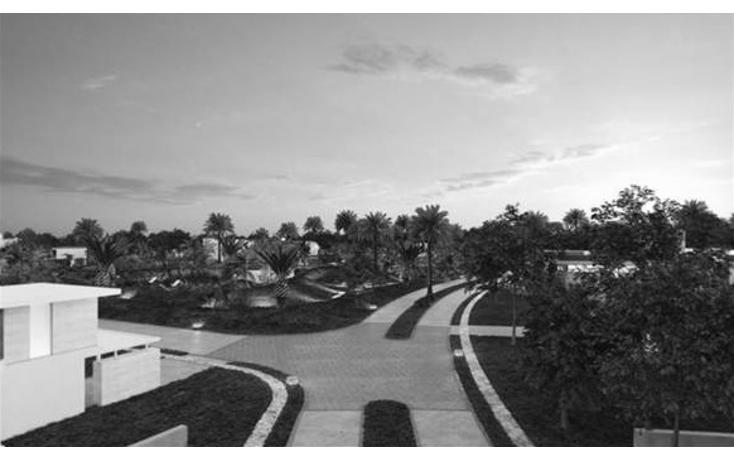 Foto de terreno habitacional en venta en  , yucatan, mérida, yucatán, 1109319 No. 05