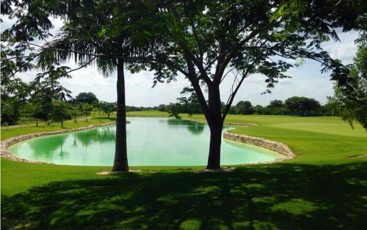 Foto de terreno habitacional en venta en  , yucatan, mérida, yucatán, 1266141 No. 01