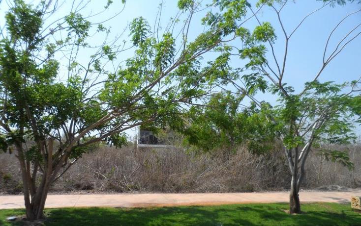 Foto de terreno habitacional en venta en  , yucatan, mérida, yucatán, 1372217 No. 09