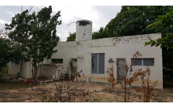 Foto de casa en venta en  , yucatan, mérida, yucatán, 1556498 No. 04