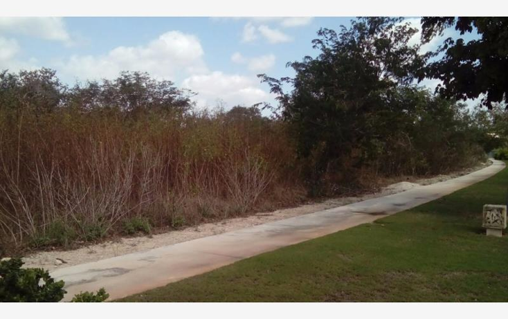 Foto de terreno habitacional en venta en  , yucatan, mérida, yucatán, 1630052 No. 04