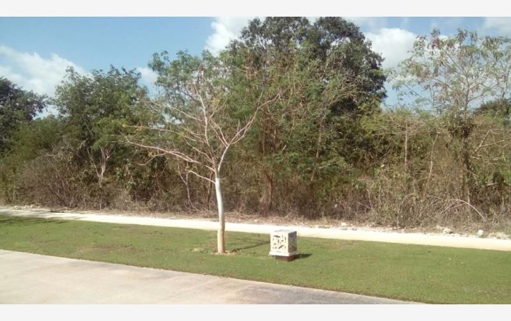 Foto de terreno habitacional en venta en  , yucatan, mérida, yucatán, 1630052 No. 11