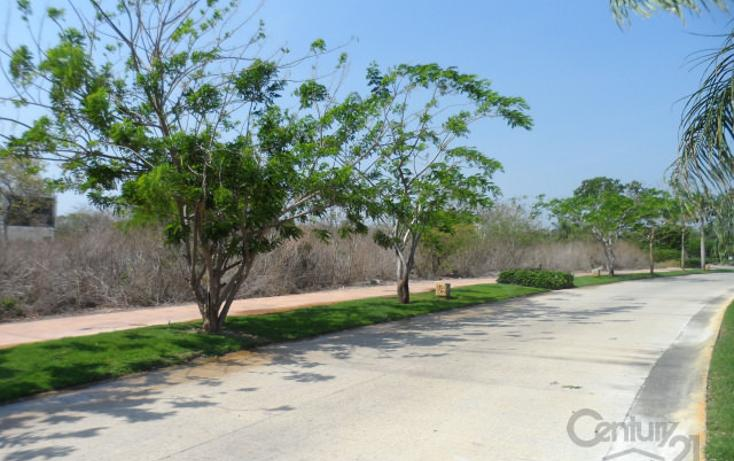 Foto de terreno habitacional en venta en  , yucatan, mérida, yucatán, 1719400 No. 07