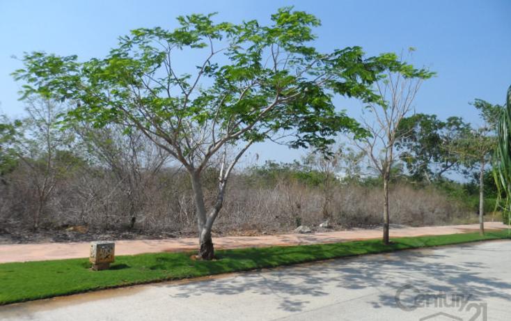 Foto de terreno habitacional en venta en  , yucatan, mérida, yucatán, 1719400 No. 10