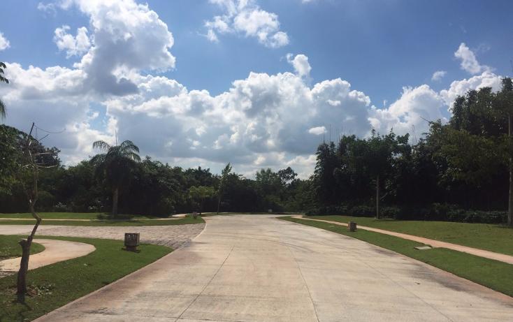 Foto de terreno habitacional en venta en  , yucatan, mérida, yucatán, 1719468 No. 04