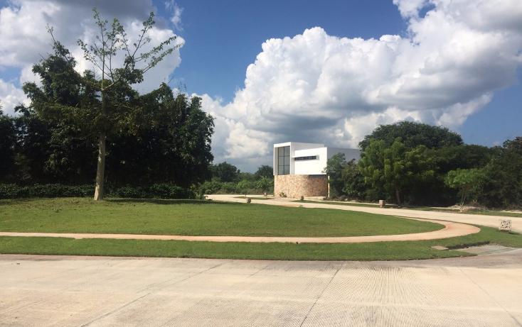 Foto de terreno habitacional en venta en  , yucatan, mérida, yucatán, 1719468 No. 06