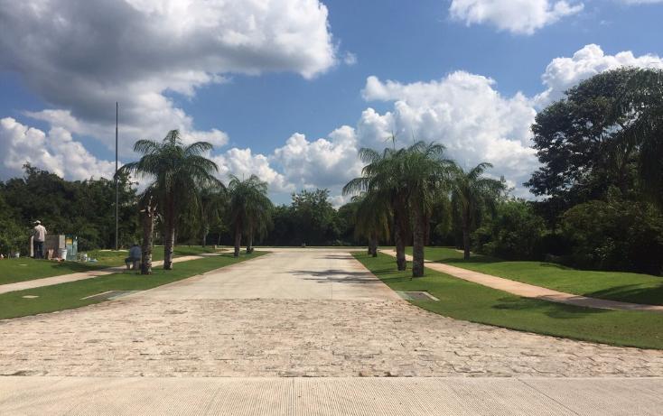 Foto de terreno habitacional en venta en  , yucatan, mérida, yucatán, 1719468 No. 07