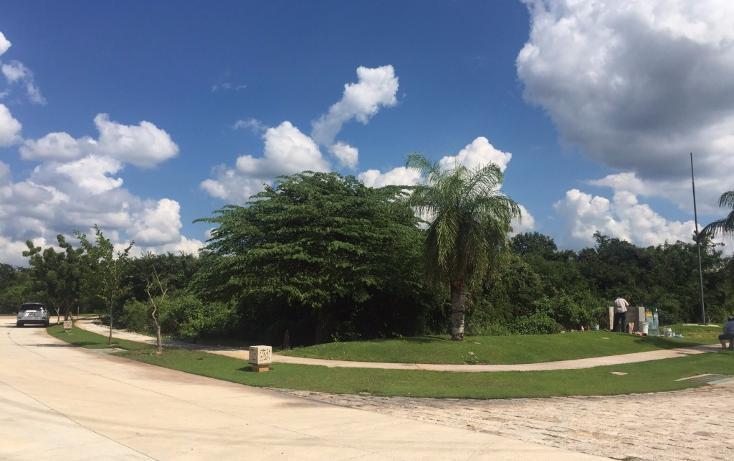 Foto de terreno habitacional en venta en  , yucatan, mérida, yucatán, 1719468 No. 08