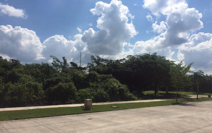 Foto de terreno habitacional en venta en  , yucatan, mérida, yucatán, 1719468 No. 18