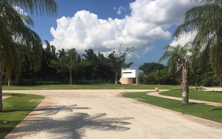 Foto de terreno habitacional en venta en  , yucatan, mérida, yucatán, 1719468 No. 19