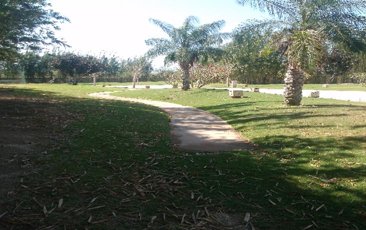 Foto de departamento en renta en  , yucatan, m?rida, yucat?n, 1829082 No. 02