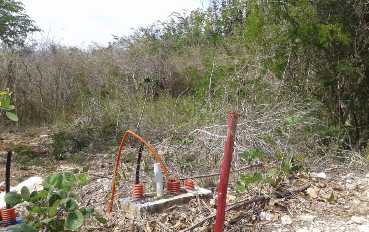 Foto de terreno habitacional en venta en yvr 13 lote 2, alcalá martín, mérida, yucatán, 1753574 no 04