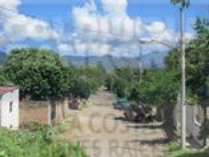 Foto de terreno habitacional en venta en zacatecas 19, las palmas, bahía de banderas, nayarit, 1513187 No. 04
